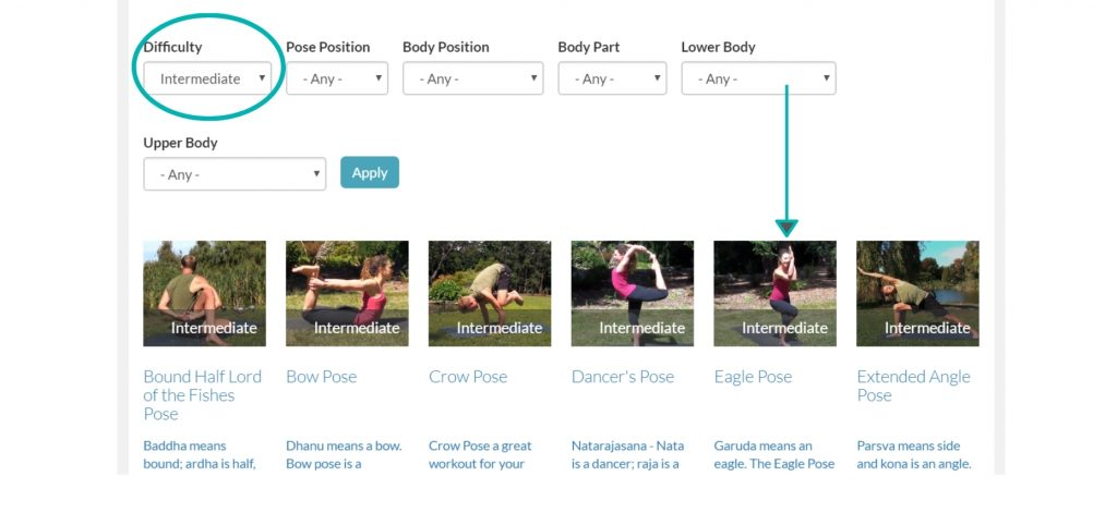 Learn intermediate yoga poses on DoYogaWithMe's streaming live online yoga classes.