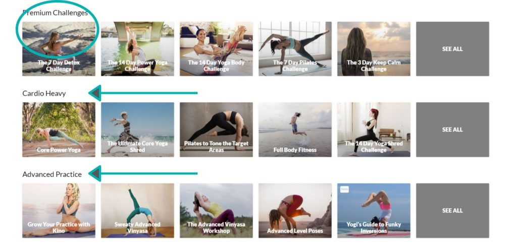 Learn basic and advanced yoga on Do You Yoga. Practice yoga online at home with Do You Yoga's premium online at home yoga workout.