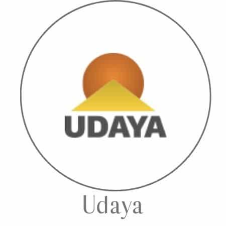In-depth review of Udaya's online yoga classes.