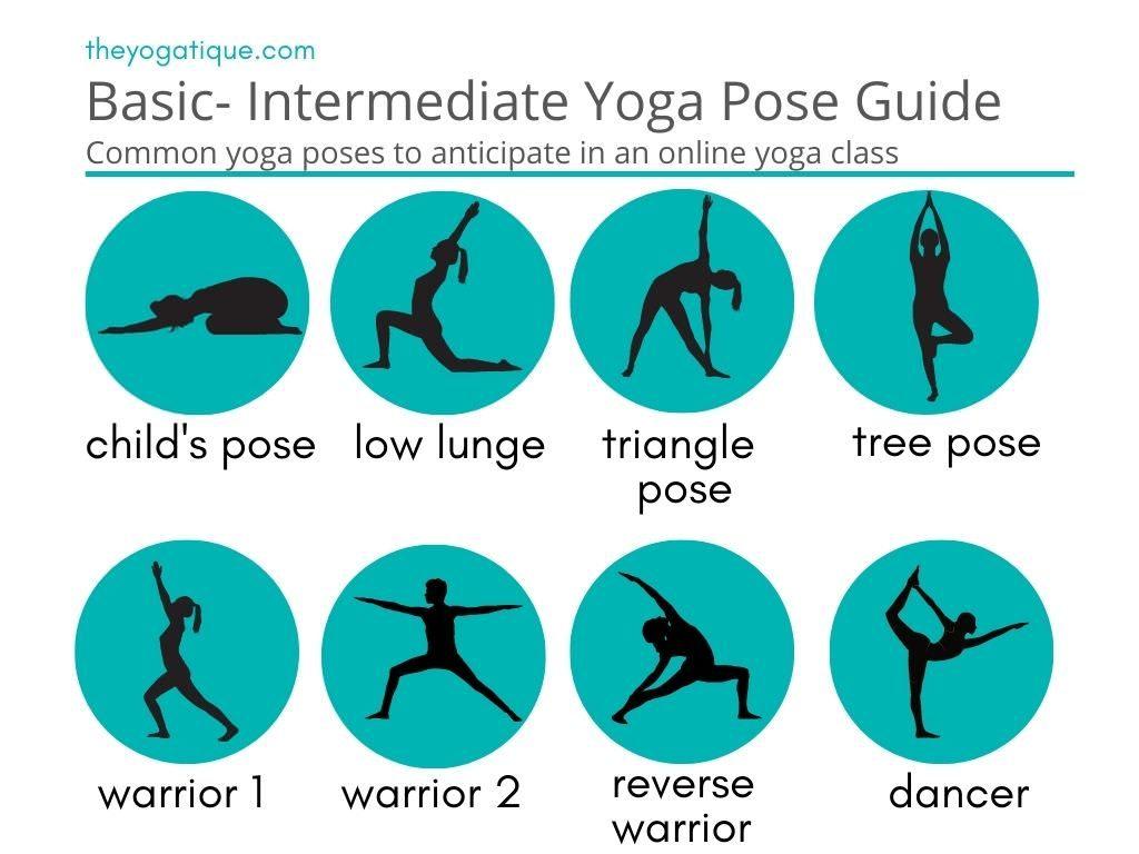 Basic yoga pose guide for online yoga classes.