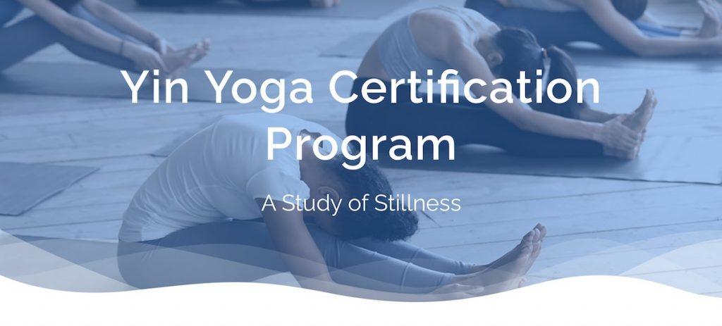 Yin Yoga teacher training online YogaRenew