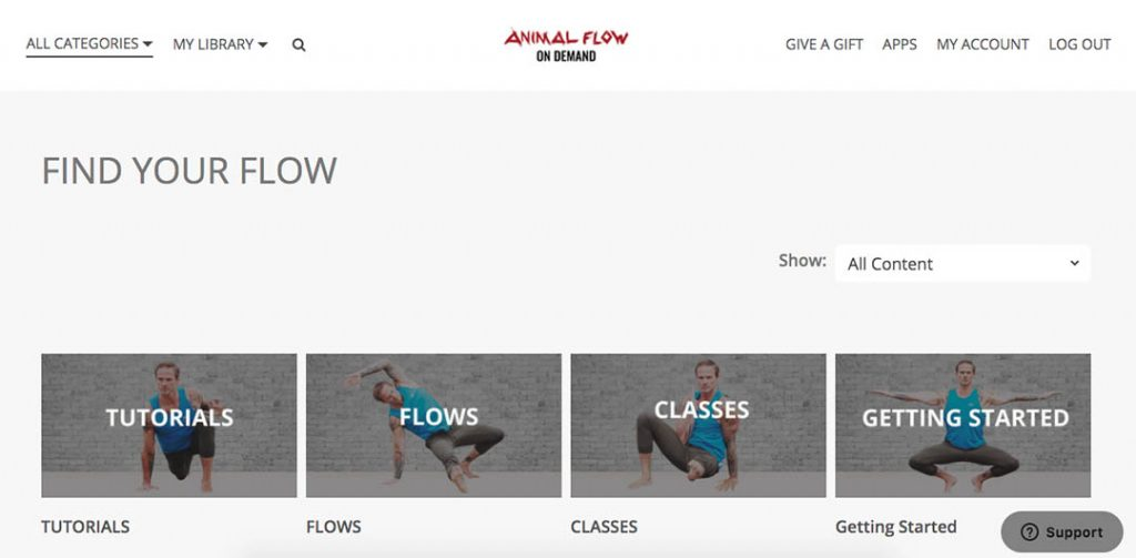 Man doing Animal Flow movements on animalflow.com.